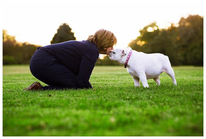 Pet Photographer Basking Ridge NJ – A Bulldog Named Petunia