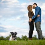 Miniature Schnauzer poses with kissing couple