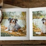 album for dog photography